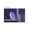 LED-Elfe